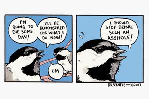 На кого подписаться: Комиксы об экзистенциальном кризисе глазами птиц