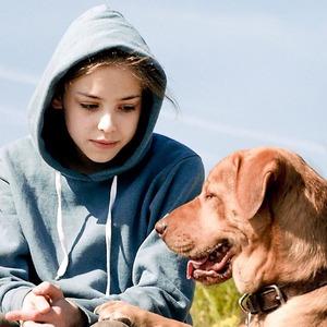 Верный друг: 10 фильмов с любимыми собаками в важной роли