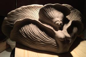 На кого подписаться: Грибы и лесные загадки в керамике Дарьи Ананко