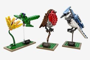 Элегантный набор LEGO «Птицы»