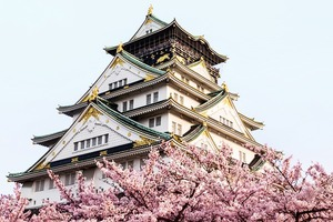 На кого подписаться: Медитативные видеозарисовки о Японии