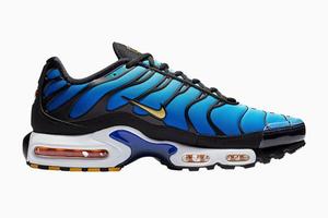 Броские кроссовки Nike Air Max Plus