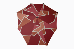 Неубиваемый и эргономичный зонт Senz