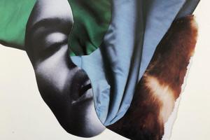 На кого подписаться: Сюрреалистичные коллажи художницы Лии Роша-Парис