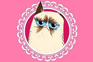 Grumpy Cat стала героиней угрюмых валентинок