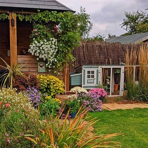 Теплицы, грядки, урожай: 9 инстаграмов с красивыми домашними садами