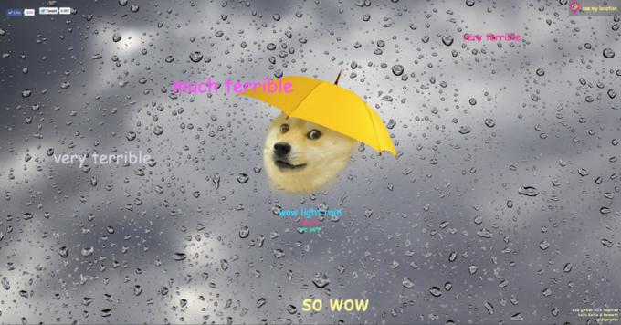 Собака-мем Doge  стала синоптиком. Изображение № 1.