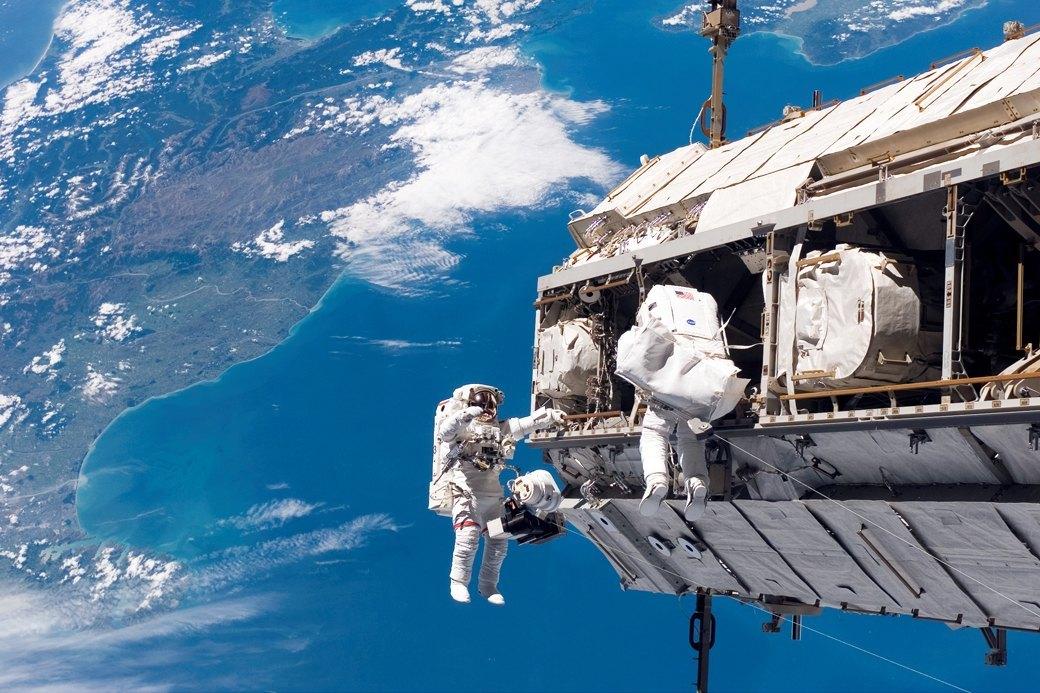Наука о космосе: Зачем на орбиту отправляют мышей, пиво и сперматозоиды. Изображение № 3.