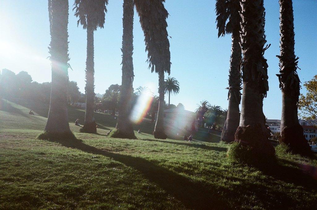 Как путешествовать с детьми:  Калифорния за 3 недели. Изображение № 10.