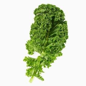Каштан. Полезные свойства состав калорийность вред и противопоказания
