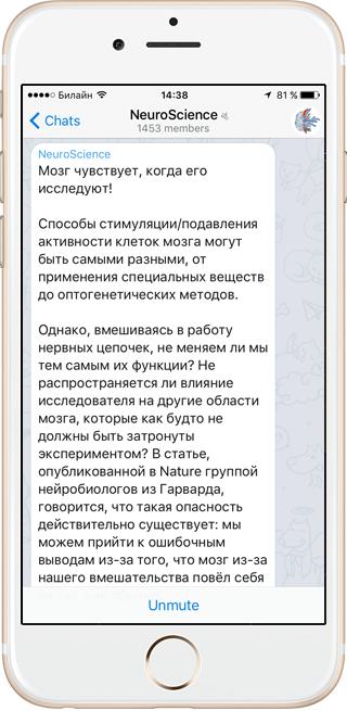 На кого подписаться: NeuroScience и другие каналы в Telegram . Изображение № 4.