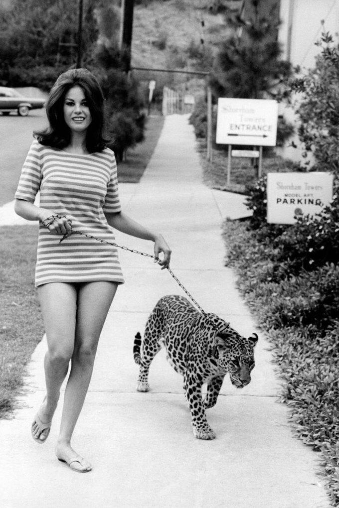 New York Magazine вспомнил самых красивых женщин с кошками. Изображение № 3.