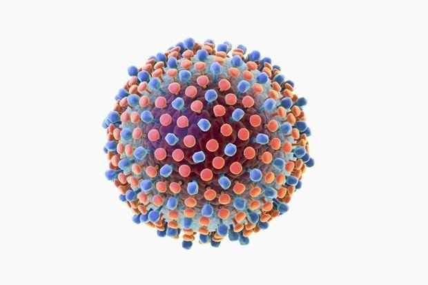 Можно ли говорить о полном излечении от ВИЧ-инфекции. Изображение № 3.