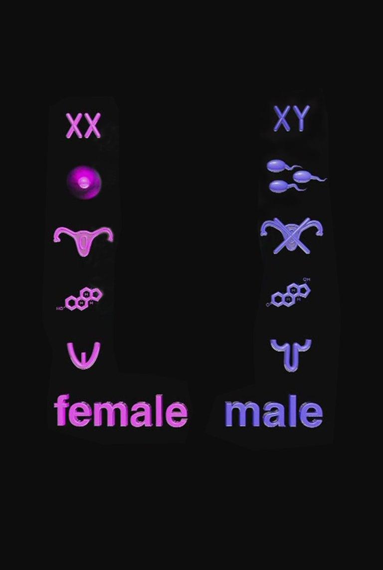 Между прочими: 10 документальных фильмов о поле и гендере. Изображение № 3.