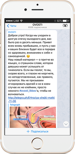 На кого подписаться: Телеграм-канал о женском здоровье Ovosti. Изображение № 1.