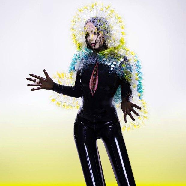 Обложка альбома Бьорк «Vulnicura». Изображение № 1.
