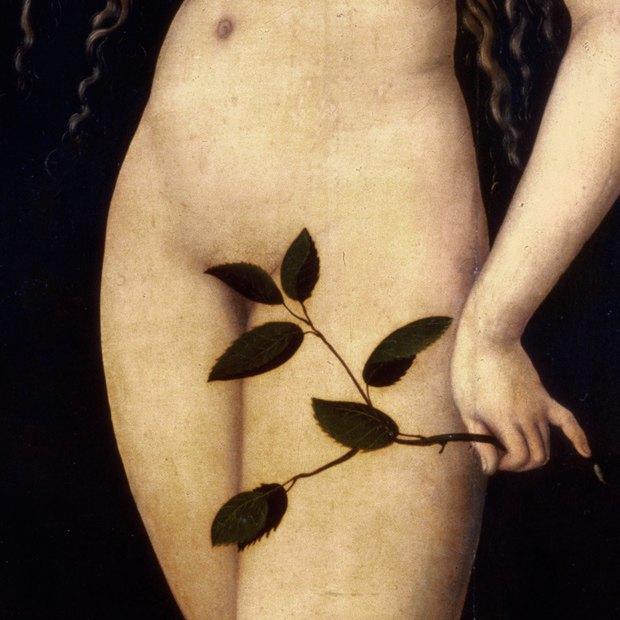 Культура тела: Как найти себя в истории красоты. Изображение № 1.