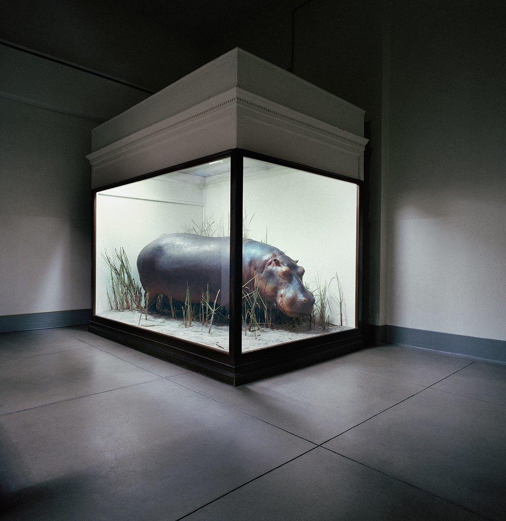 «Museology»:  Тайная жизнь  музейных экспонатов. Изображение № 6.