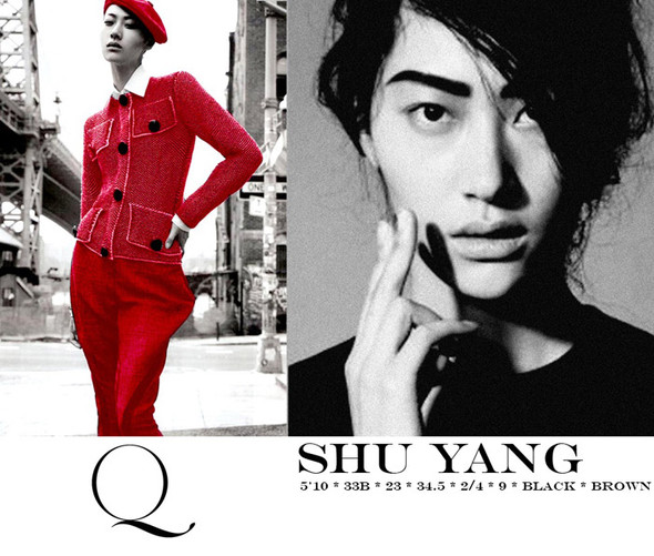 Композитки пяти модельных агентств к Нью-Йоркской неделе моды. Изображение № 19.