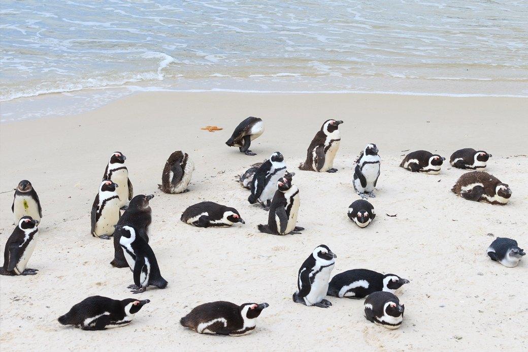 Идеи для путешествий: Необычные пляжи мира. Изображение № 3.