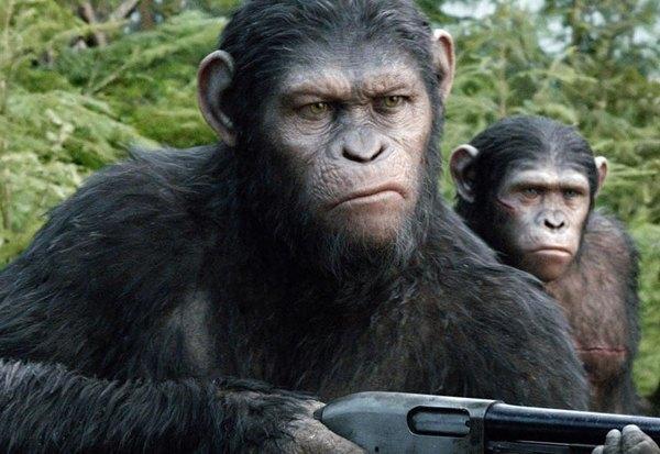 Эволюция духовности: Что говорит о людях «Планета обезьян». Изображение № 5.