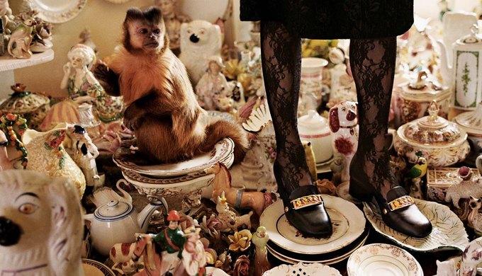Gucci выпустили новую кампанию, посвящённую коллекционерам. Изображение № 9.