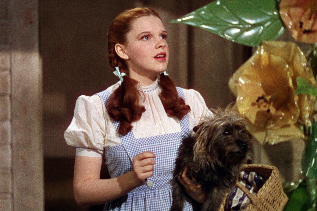 Верный друг: 10 фильмов с любимыми собаками в важной роли. Изображение № 2.