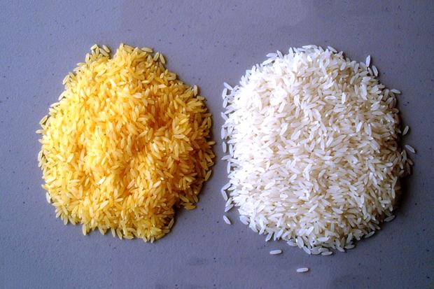 Омг, ГМО:  5 изобретений в мире еды. Изображение № 3.