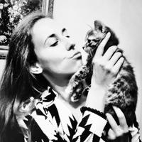 Как нарядиться  на выставку котов  «ИнфоКот». Изображение № 5.