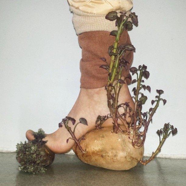 Новый тренд Instagram — «туфли» из подручных предметов. Изображение № 4.