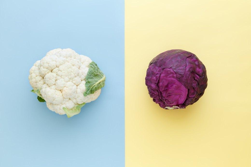 Еда — друг: Нужно ли здоровым людям садиться на диету. Изображение № 2.