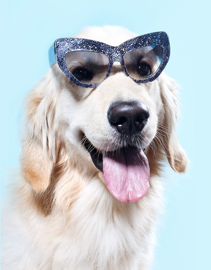 Ревизия: Солнцезащитные очки. Изображение № 13.