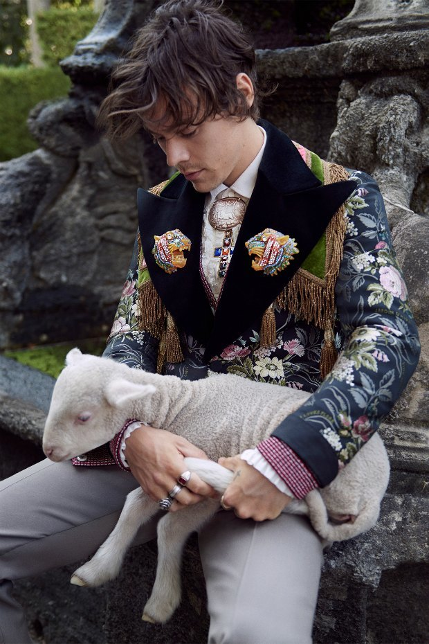Овечки, поросята и Гарри Стайлз в новом лукбуке Gucci. Изображение № 3.