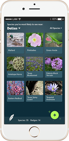 Что скачать: Приложение Seek — Shazam  для животных и растений. Изображение № 1.