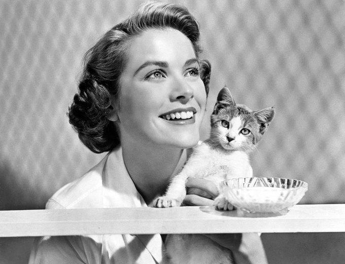 New York Magazine вспомнил самых красивых женщин с кошками. Изображение № 1.
