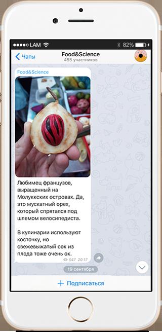 На кого подписаться: Телеграм о научном подходе к еде. Изображение № 3.