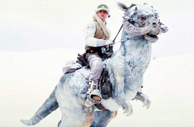 Зима-холода: Самые отмороженные  герои кино и сериалов. Изображение № 2.