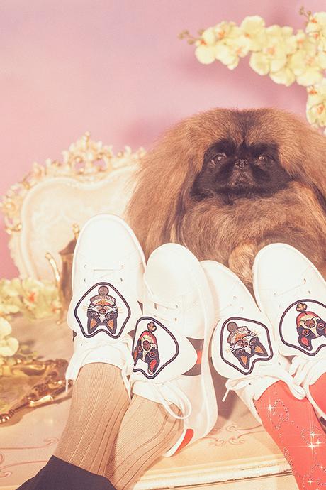 Новая кампания Gucci с умилительными псами. Изображение № 18.