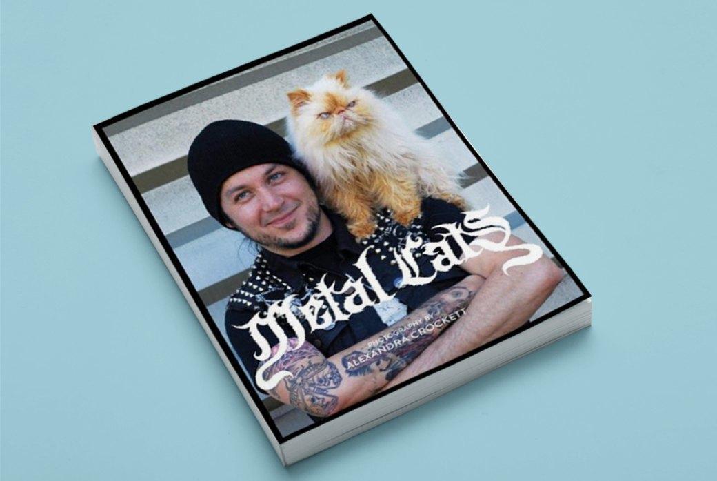 Фотоальбом «Metal Cats»  с котиками и металлистами. Изображение № 1.