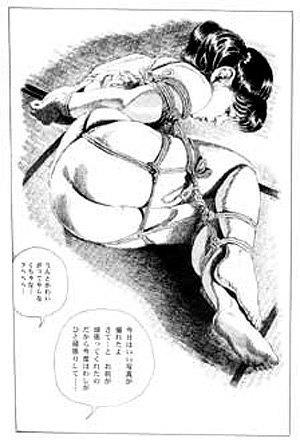 Почему в Японии  отказываются от традиционного секса. Изображение № 7.
