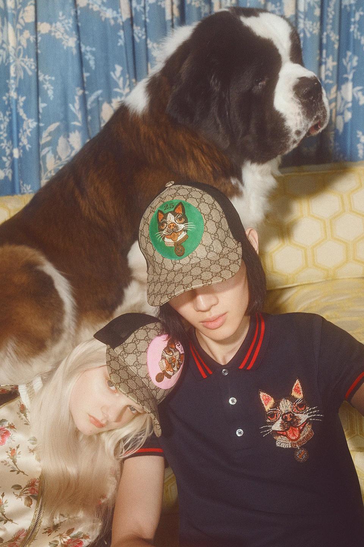 Новая кампания Gucci с умилительными псами. Изображение № 11.
