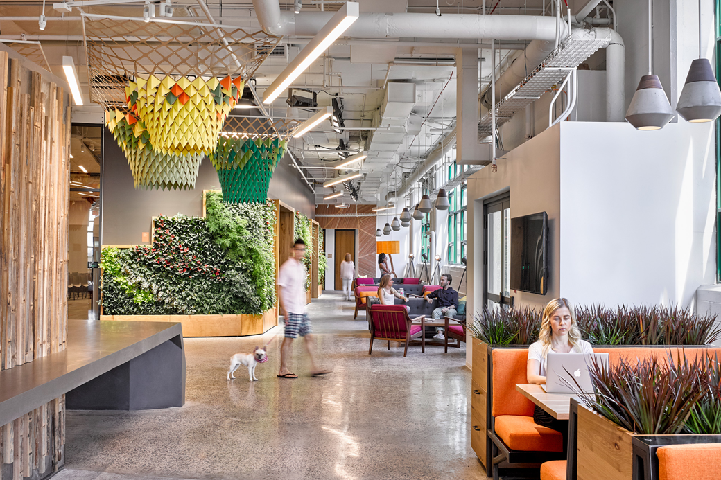 Зелень, вода и никакой колы: Как сделать офис полезным для здоровья. Изображение № 3.