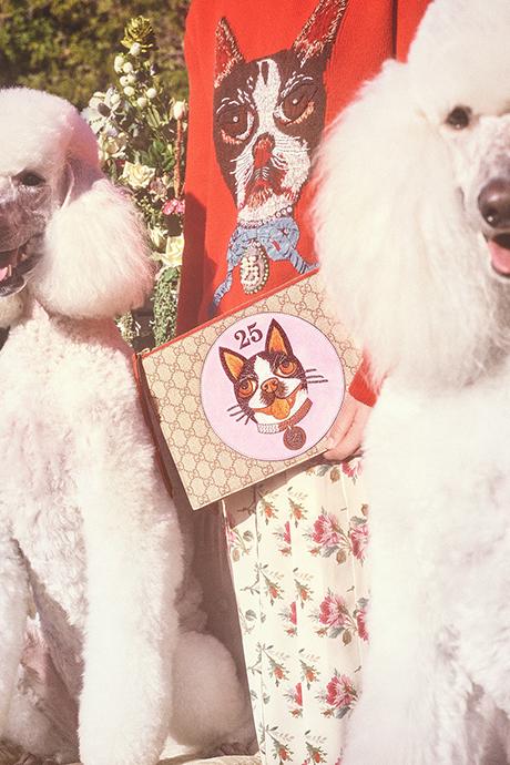 Новая кампания Gucci с умилительными псами. Изображение № 13.