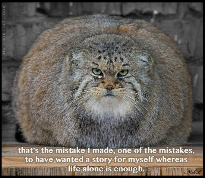 В ожидании кото: Демотиваторы из Беккета. Изображение № 4.