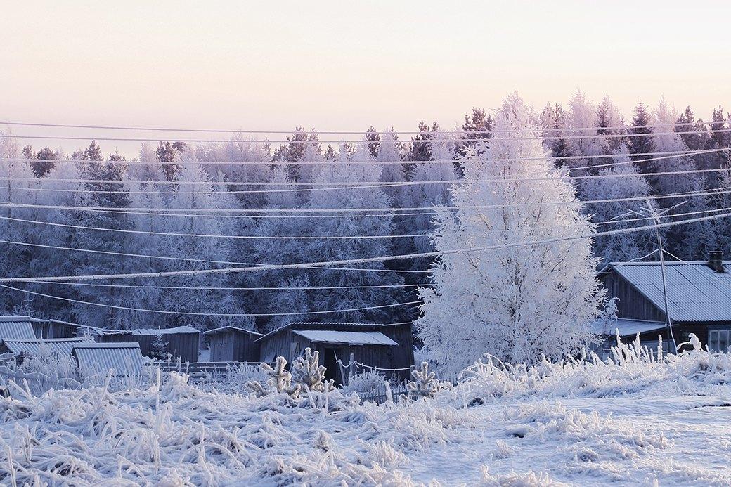 В гостях у хаски:  10 сказочных зимних путешествий. Изображение № 2.