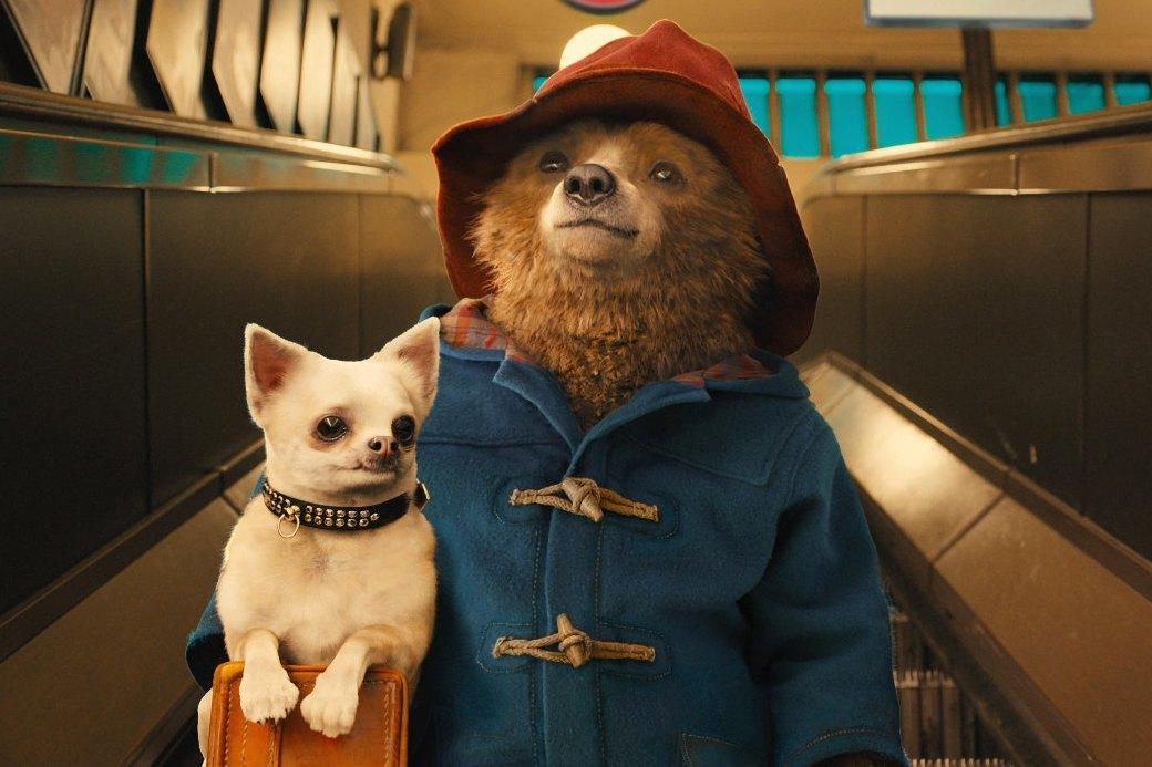 «С любовью, Паддингтон»: Как медвежонок-эмигрант учит эмпатии. Изображение № 1.