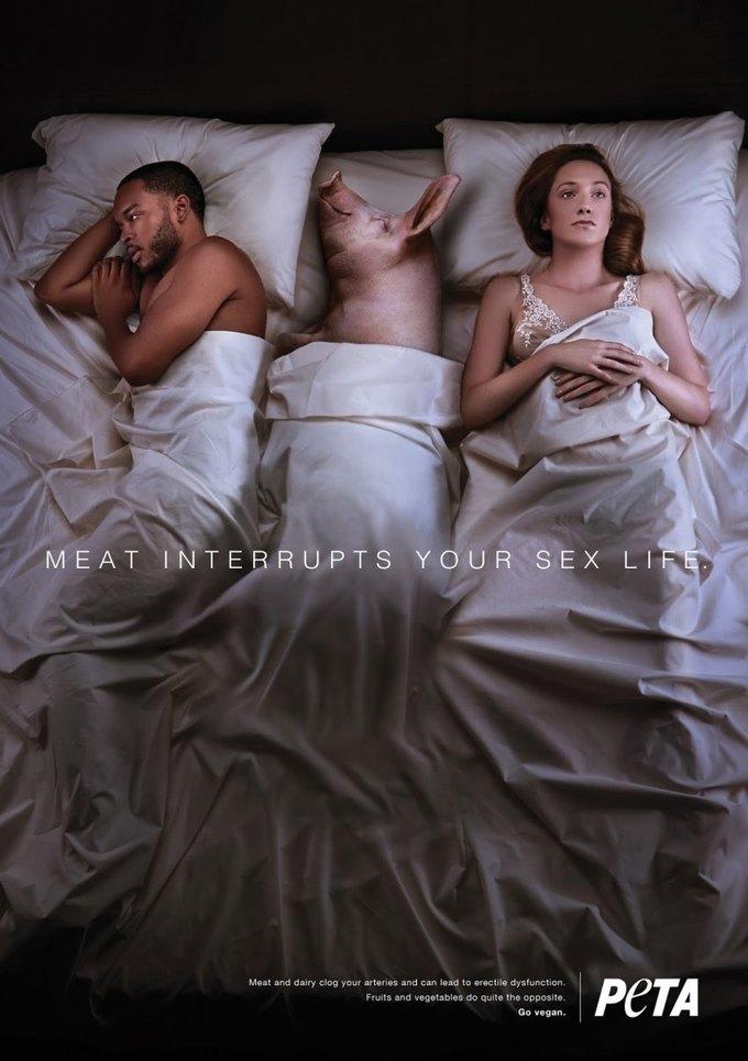 В новой кампании PETA животные мешают людям заниматься сексом. Изображение № 2.