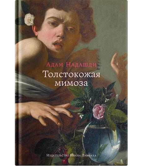 Одиночество, протесты и сексуальность: 5 книг, чтобы увидеть мир под новым углом. Изображение № 4.