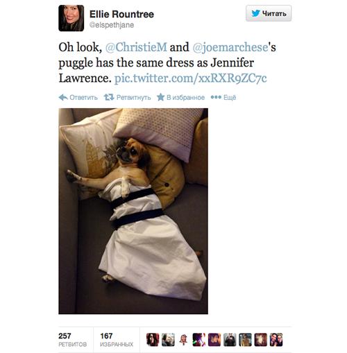 Платье Дженнифер Лоуренс с «Золотого глобуса» стало мемом. Изображение № 3.