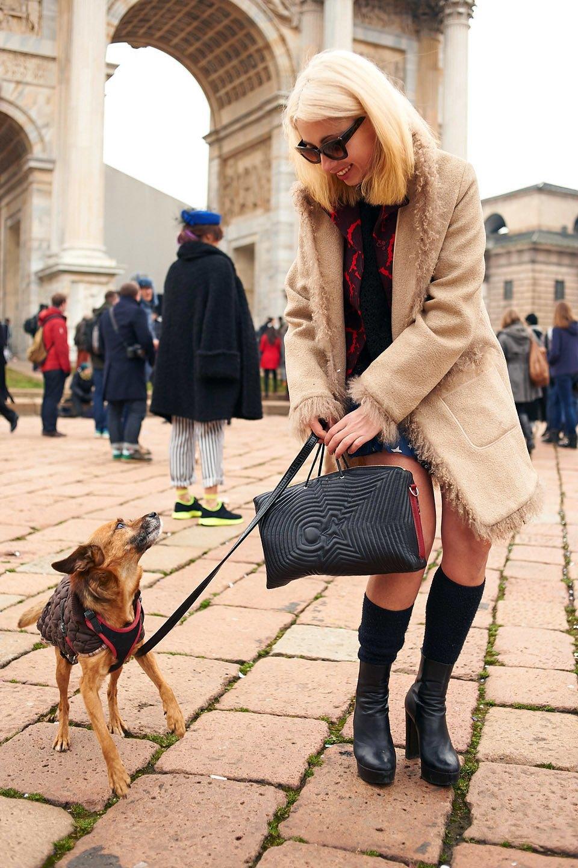 Стритстайл: Неделя моды в Милане,  часть III. Изображение № 38.